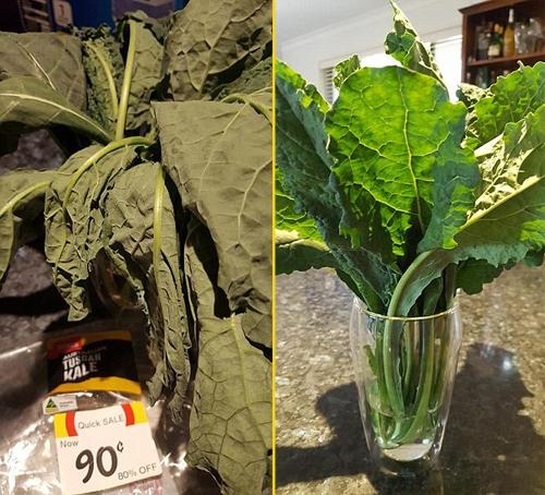 Hình ảnh cây rau héo rũ khi mua ở siêu thị và tươi xanh sau một đêm được ngâm nước. Ảnh: Facebook.